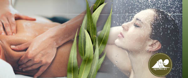 lavender massage and shower special